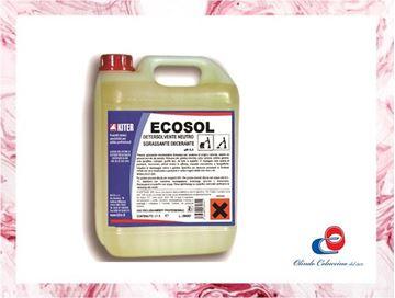 Immagine di Ecosol - Decerante/Sgrassante